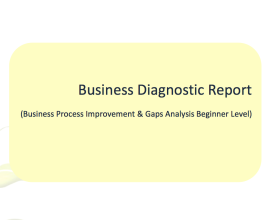 business diagnostic report