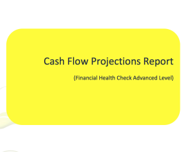 cash flow projections report