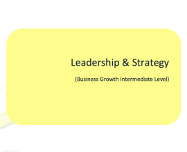 L2G Workbook - Leadership & Strategy