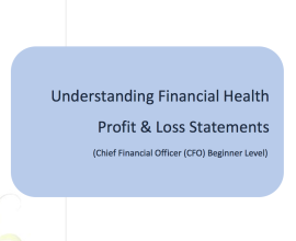 L2G Workbook - Understanding Financial Health - Profit & Loss Statements