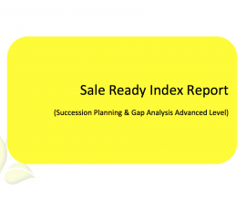L2G Workbook - Sale Ready Index Report