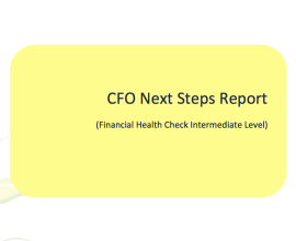 cfo next steps report