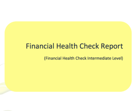 financial health check report