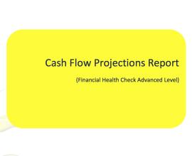 cash flow projections report