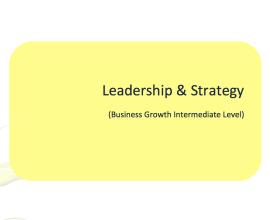 L2G Workbook - Leadership & Strategy