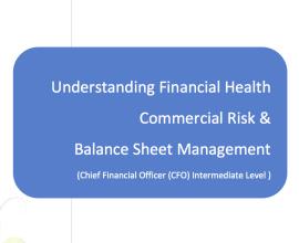 L2G Workbook - Understanding Financial Health - Commercial Risk & Balance Sheet Management