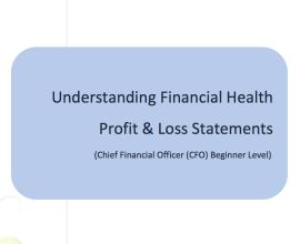 L2G Workbook - Understanding Financial Health - Profit & Loss Statements