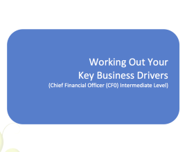 L2G Workbook - Working Out Your Key Business Drivers